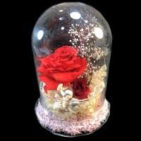 再生花紅玫瑰(如圖示)